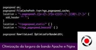 Otimizacao-da-largura-de-banda-no-Apache-e-no-Nginx-turbosite
